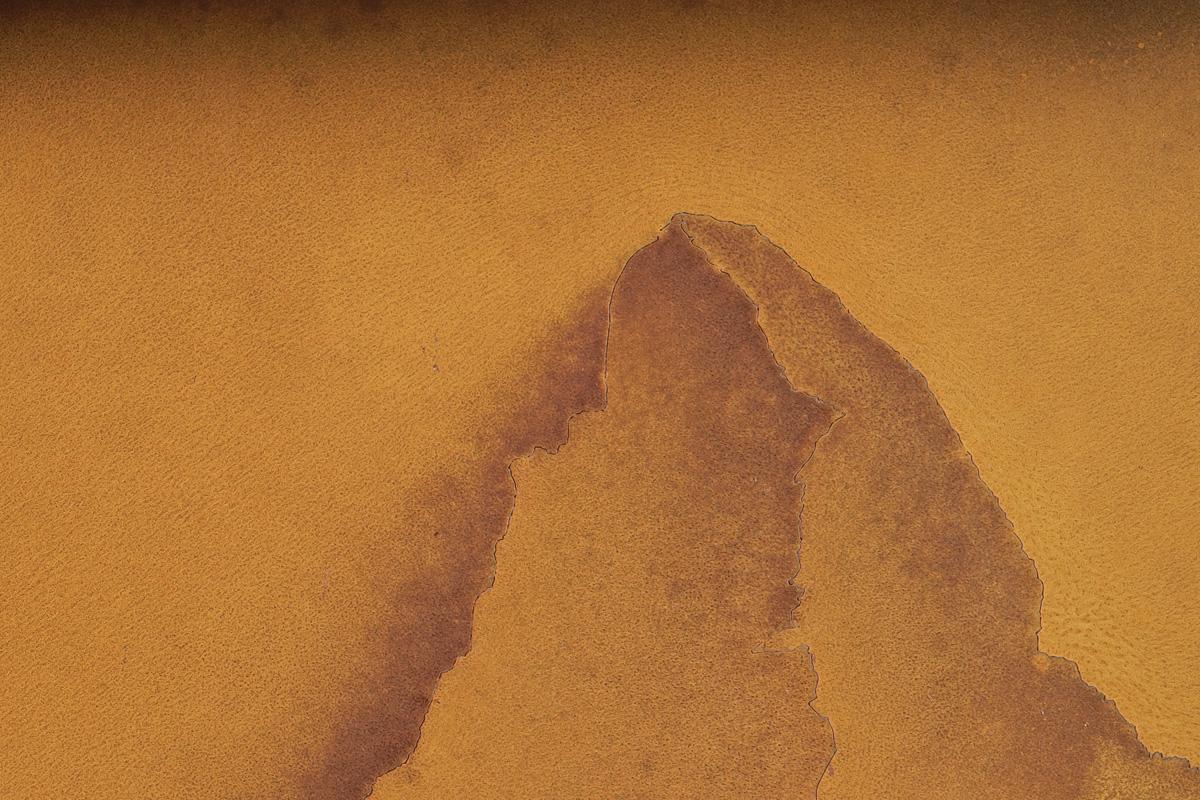 CERVINO, dettaglio della scultura (foto di Nicola Dell'Aquila)