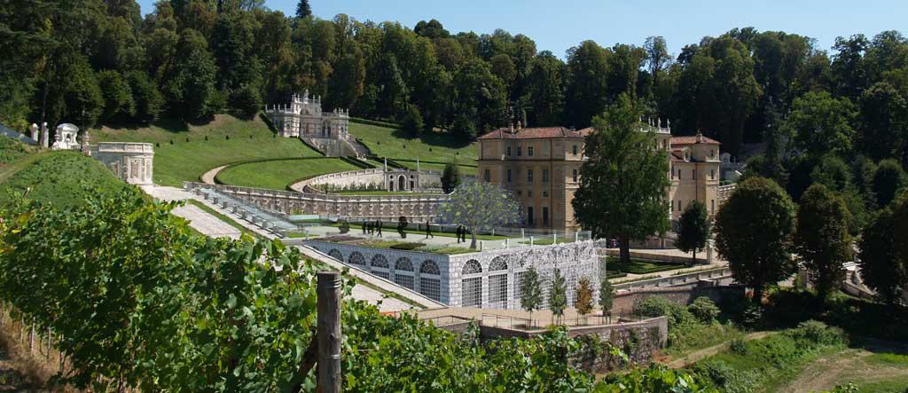 CONCORSI_villa-della-regina_4 vista-vigne