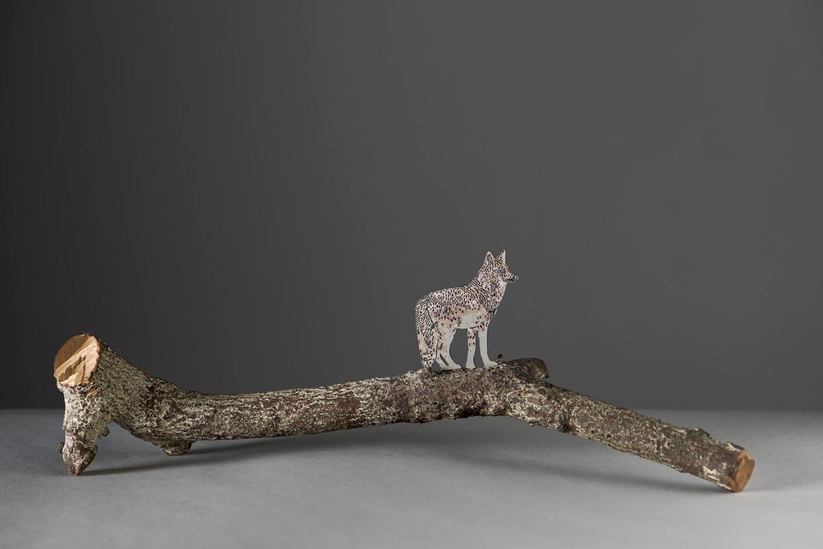 COYOTE scultura (foto di Nicola Dell'Aquila)