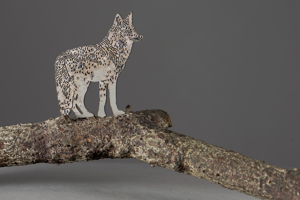 COYOTE dettaglio della scultura (foto di Nicola Dell'Aquila)